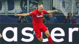 Haland al Napoli? Il rivale numero uno è il Real Madrid