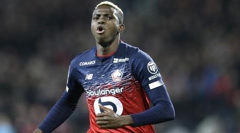 """""""Osimhen al Napoli sarà una superstar"""": l'annuncio del presidente del Lille"""